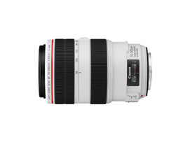 Canon EF 70 300mm f/4 5.6L IS USM
